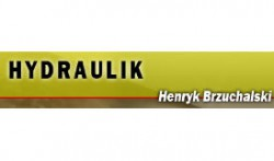 Usługi Budowlane,Hydrauliczne,Gazowe Henryk Brzuchalski