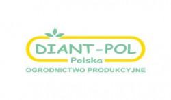 PPHU DIANT-POL Polska Anna Kwiecień